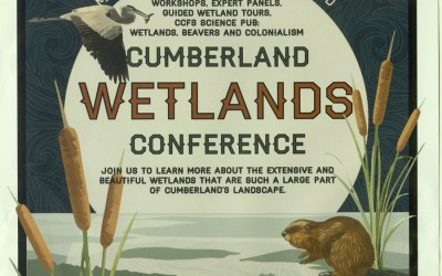 Cumberland conference shows importance of wetlands