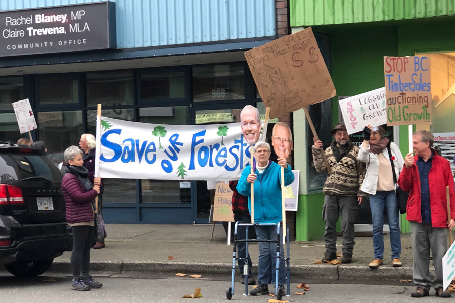 BC's logging practices called out by Comox Valley group
