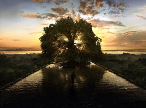 L'Arbre de Vie dans The Fountain.