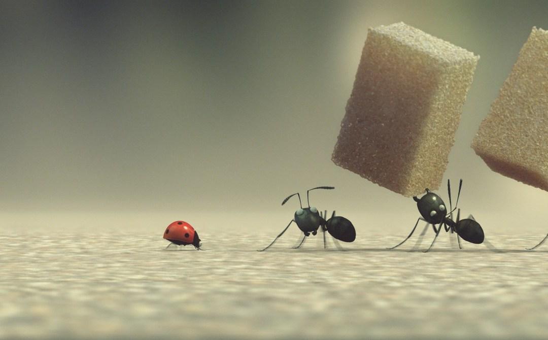 L'équilibre précaire de la fourmi portant un morceau de sucre