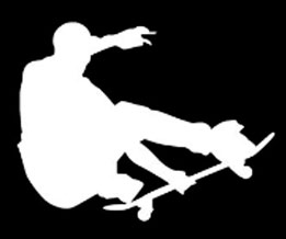skate boarder decal