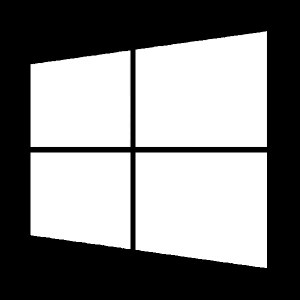 windows decal