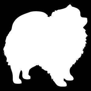 Pomeranian decal