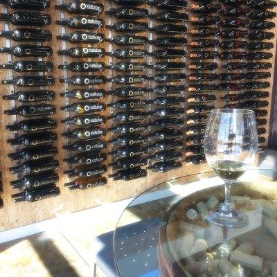 Fidelitas Wines bottle display