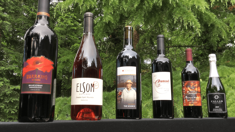 The Sisters of the Vinifera Revolution bottle lineup