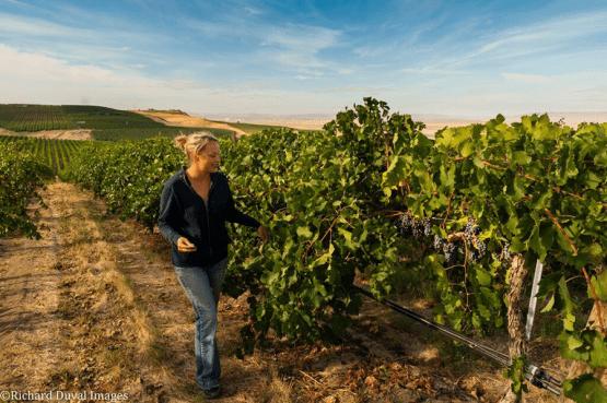 Lacey Lybeck, Vineyard Manager, Sagemoor