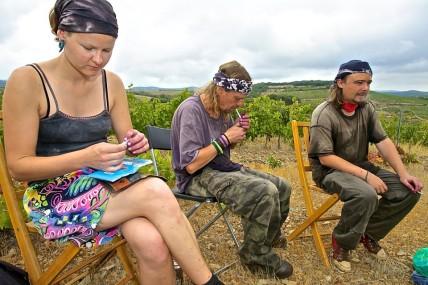 Primeira fotogarfia publicada no artigo Vídeo: Les Terroiristes du Languedoc, um olhar sobre a inovação e a diversa riqueza de terroirs!