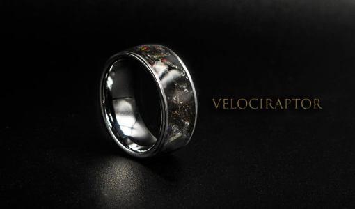 What is a Dinosaur Bone Ring? | Men's Dinosaur Bone Ring | Decazi