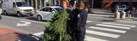 Man as Tree
