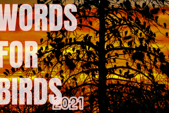 WORDS FOR BIRDS 2021