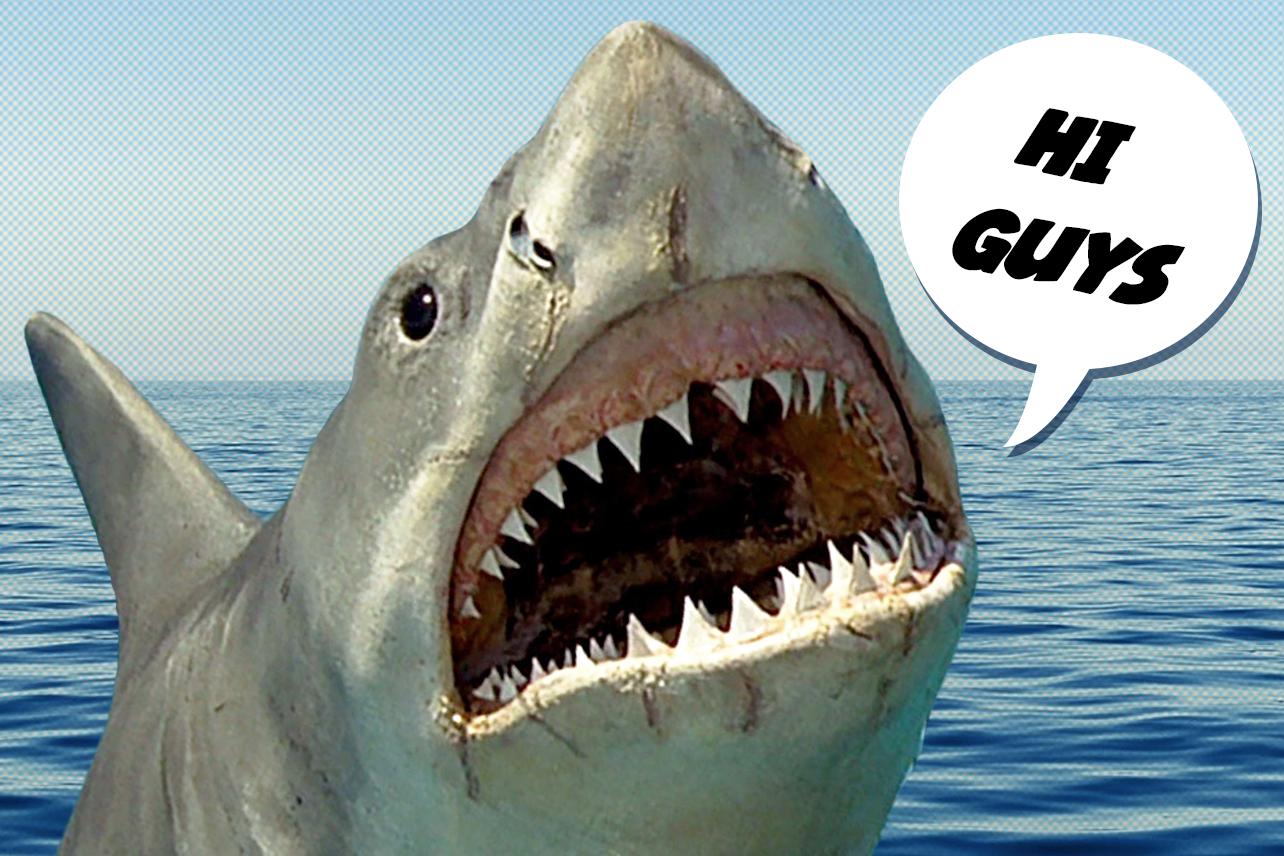 Jaws': In Defense of the Shark | Decider