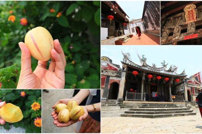 【澎湖景點】參拜台灣最早的廟宇,一嚐澎湖季節限定的楊梅果!
