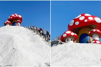 【台南景點】七股鹽山上竟然長香菇?雖然很可愛,但總感覺哪裡不搭嘎~