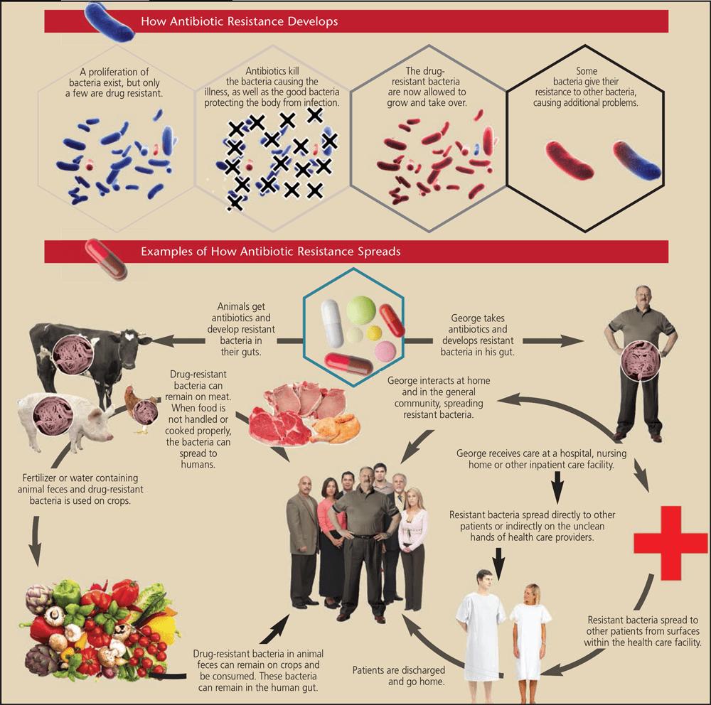 0216_antibiotic-3