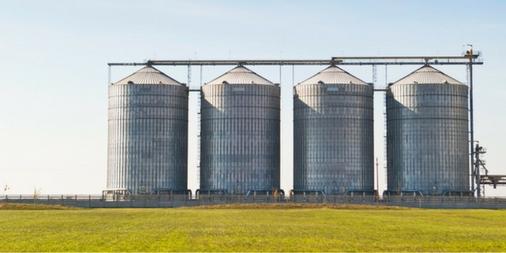 Risk Management for Your Crop Marketing Program