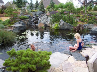 pond skimmers pond bog filtration – The Deck and Patio Company