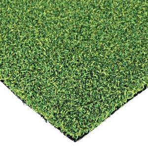 Diamond Putt Pro Artificial Grass