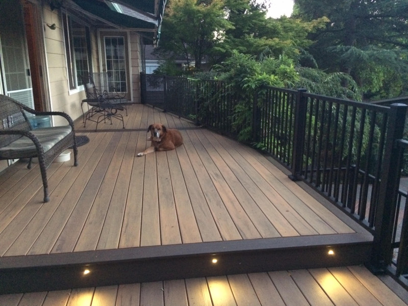 Composite Deck With Aluminum Railing Dogs Deck Masters