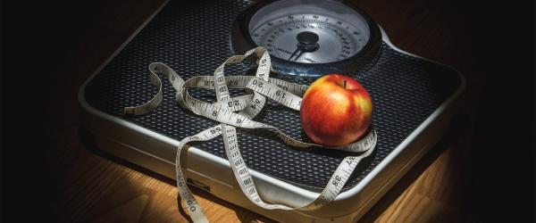 la restriction calorique, source de longevite