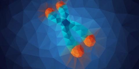 telomeres et vieillissement