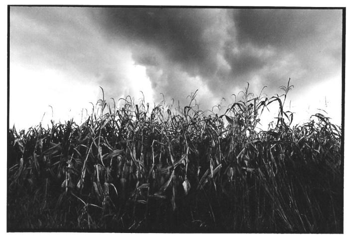 Ciel d'orage, vues photographiques, photo argentique