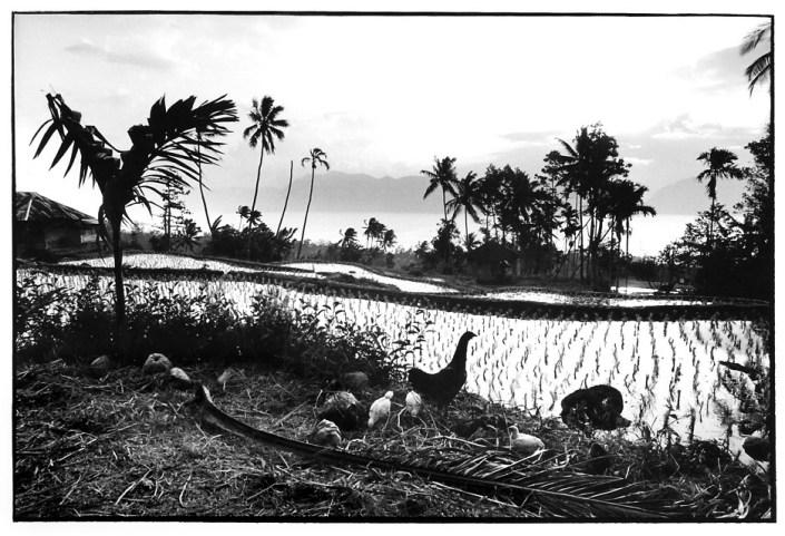 Au bord du lac Maninjau, Indonésie, photographies argentiques, Devals