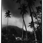 Les cocotiers, Indonésie, prise de vue argentique, JP Devals