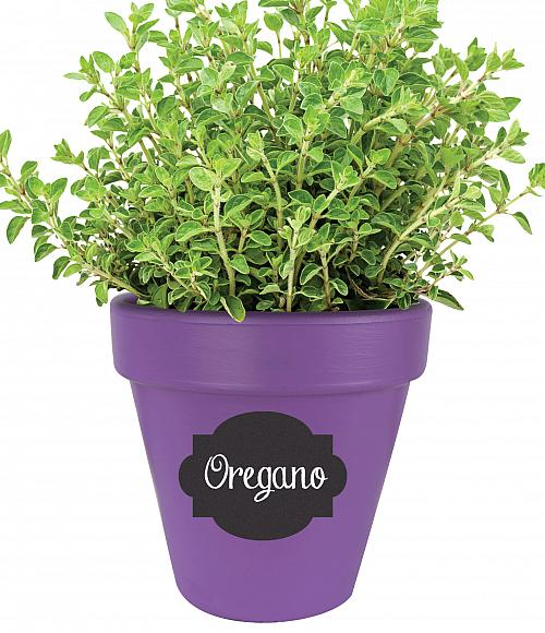 Chalkboard Labeled Herb Pot  Project by DecoArt
