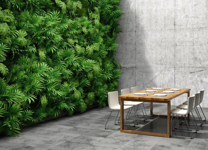 Ogród wertykalny - najlepszy sposób na przyjazne, zielone biuro