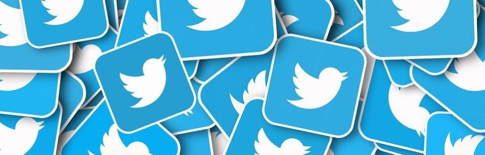 Logo de Twitter, présent à plusieurs reprises et superposés les uns sur les autres.