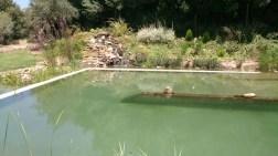 Piscinas_ecologicas_10