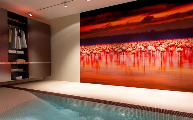 Çeşitli ebat ve temalarda fotoğraflı duvar resimleri ile duvar dekorasyonu