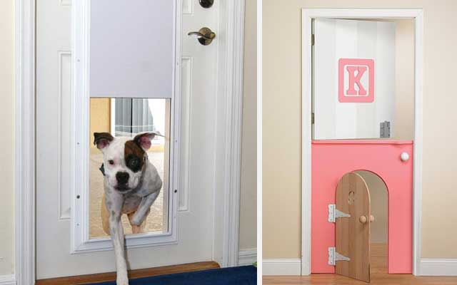 iç-dekorasyon-evcil-köpekler