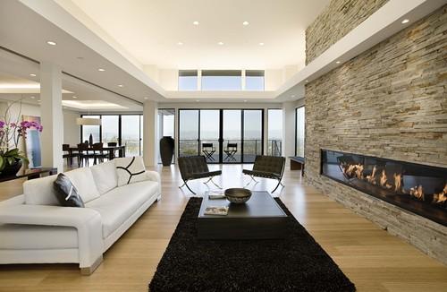 Beautiful Modern Living Room Designs  Decoholic