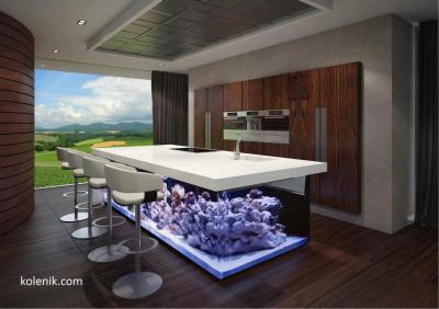 25 Rooms With Stunning Aquariums - Decoholic
