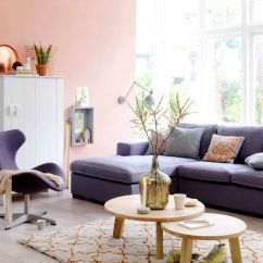 Light Pink Living Room Ideas Show Me Designs How To Decorate With Blush Decoholic Fresh Dark Sofa And Wall