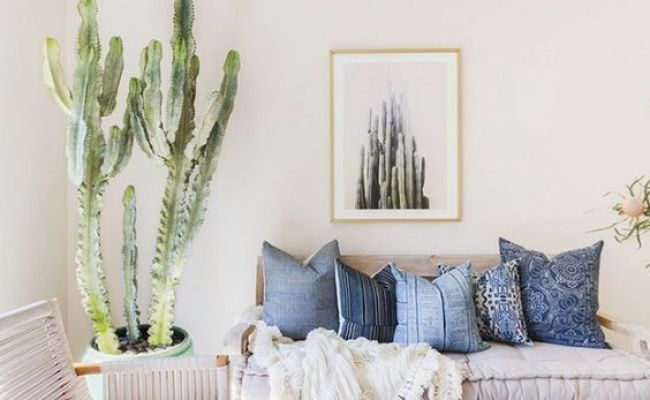 10 Ways To Work The Cactus Trend Decoholic