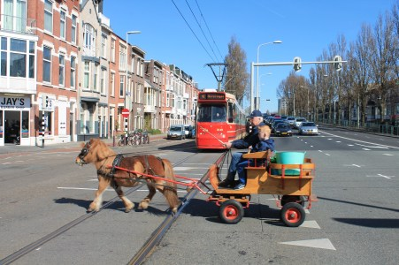 Zelfs de tram stopt voor onze gft-ponykar.