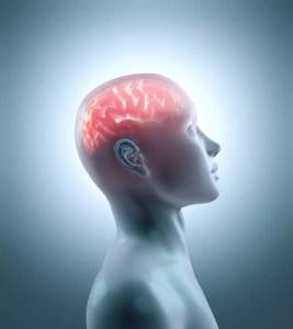 enlightened brain