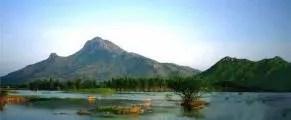 Arunachala-Crop