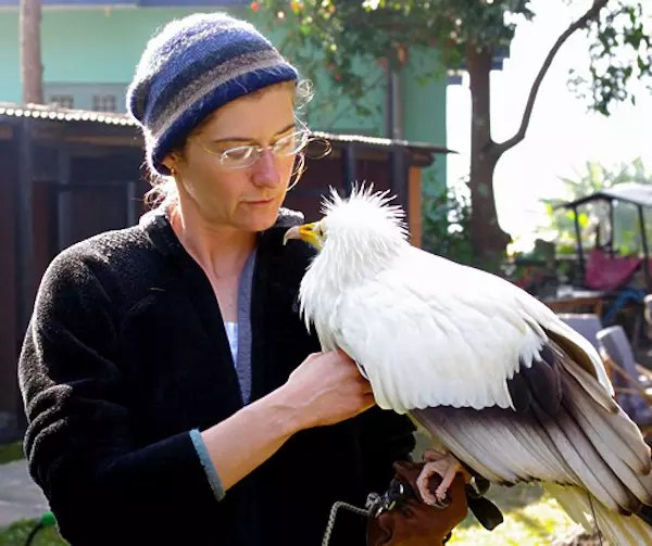 rindzin with vulture