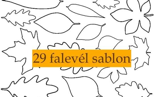 29 falevél sablon