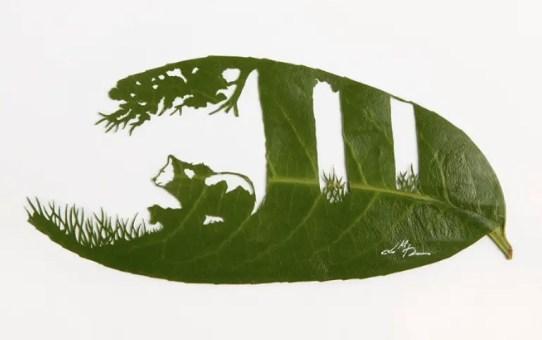 Falevél art - Lorenzo M. Durán
