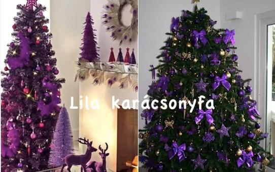 Lila karácsonyfa