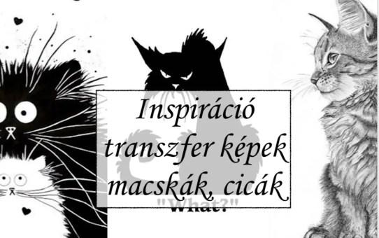 Inspiráció – transzfer képek macskák, cicák