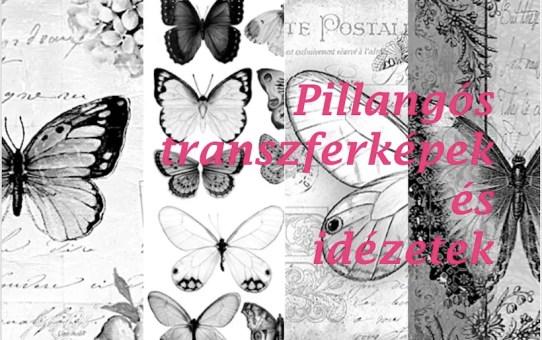 Pillangó, butterfly - transzfer képek, idézetek, érdekességek 3.