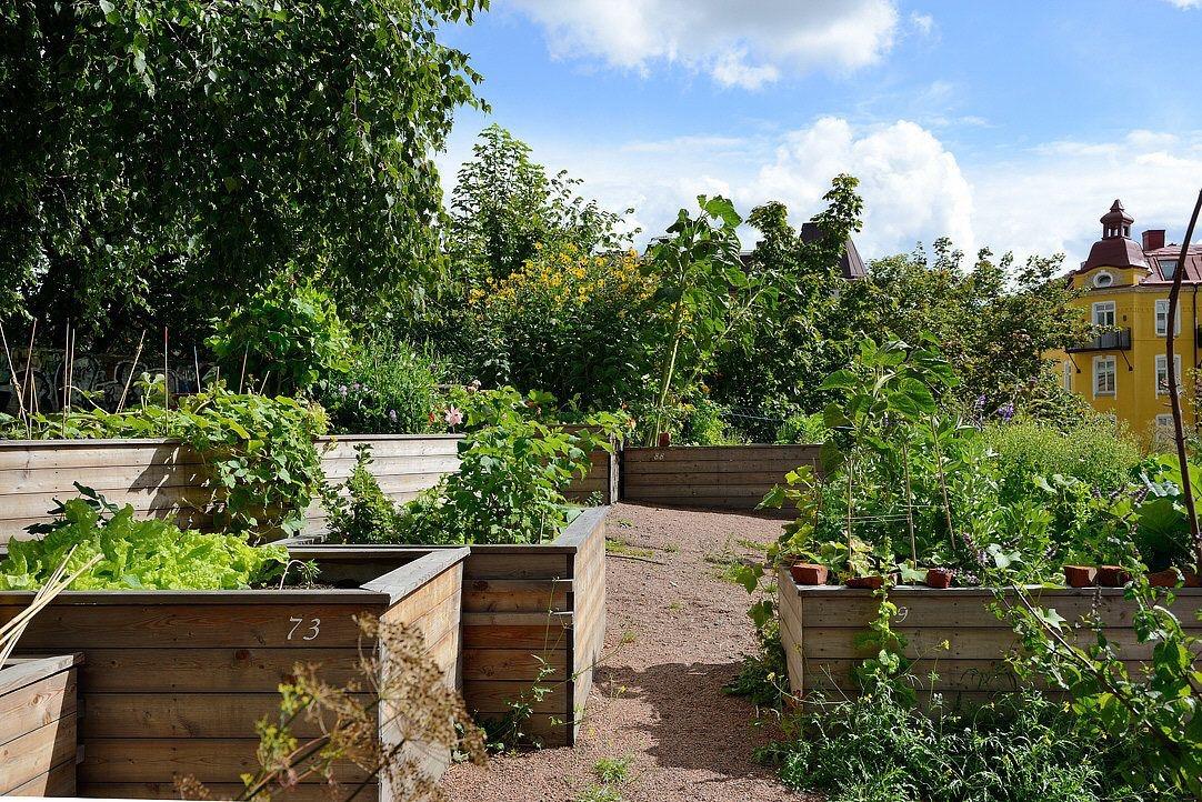ящики для растений