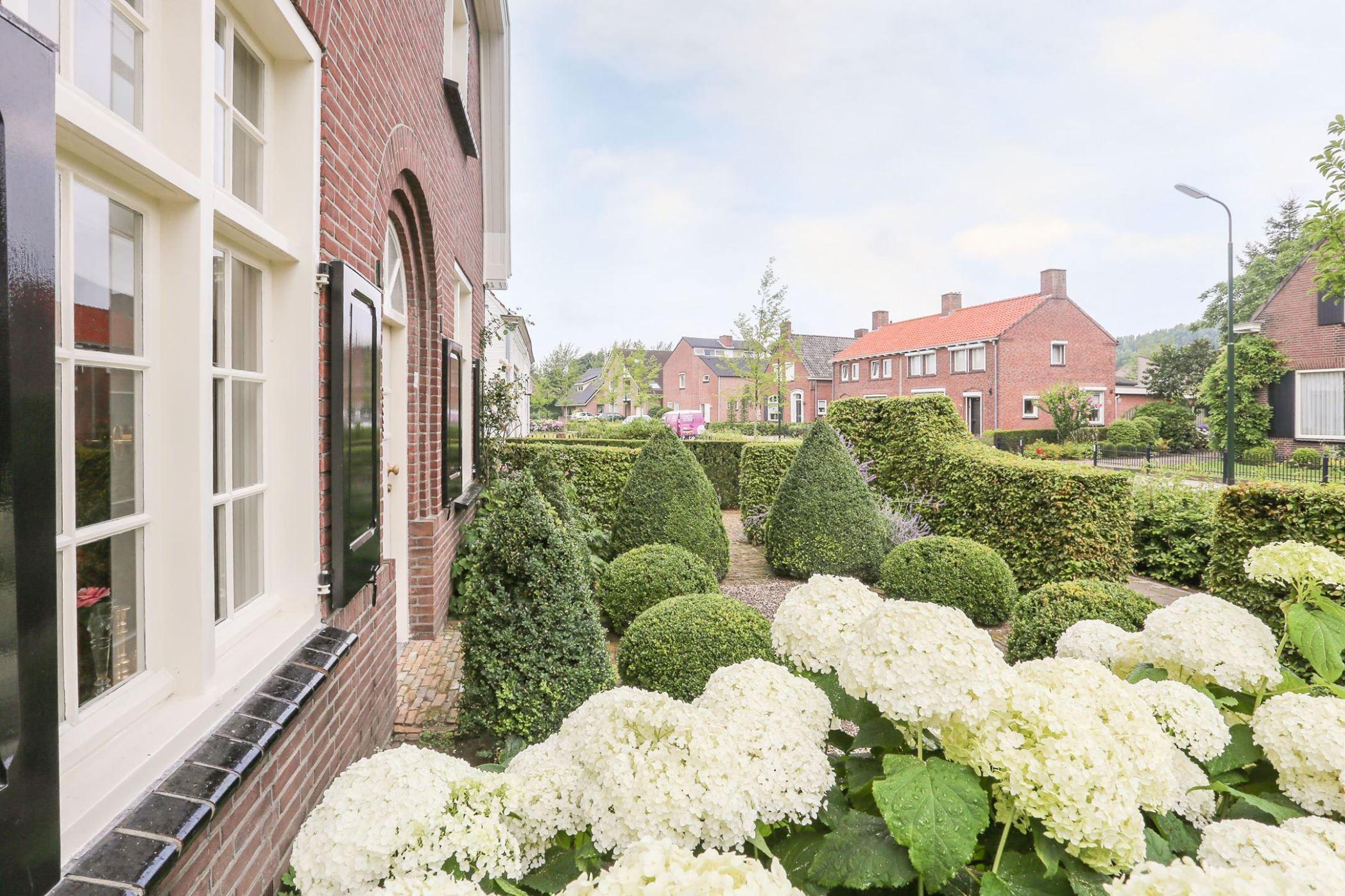 цветы кустарники перед домом