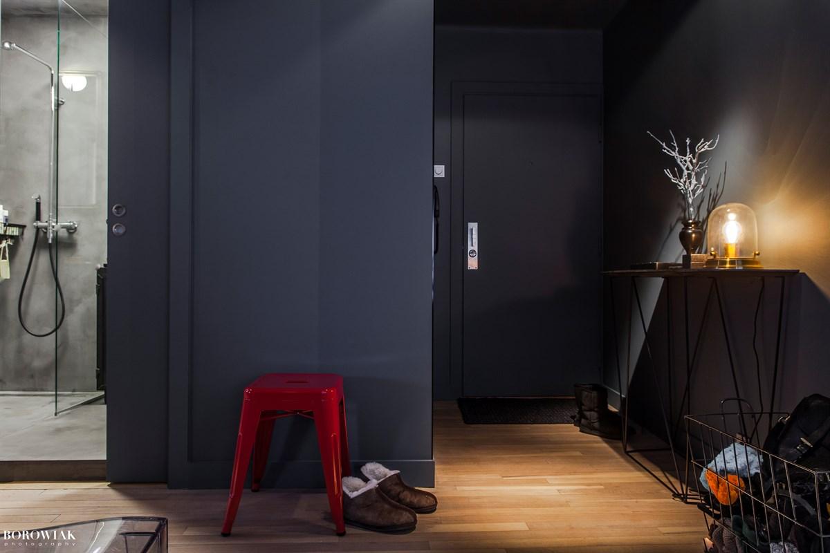 входная дверь коридор душевая