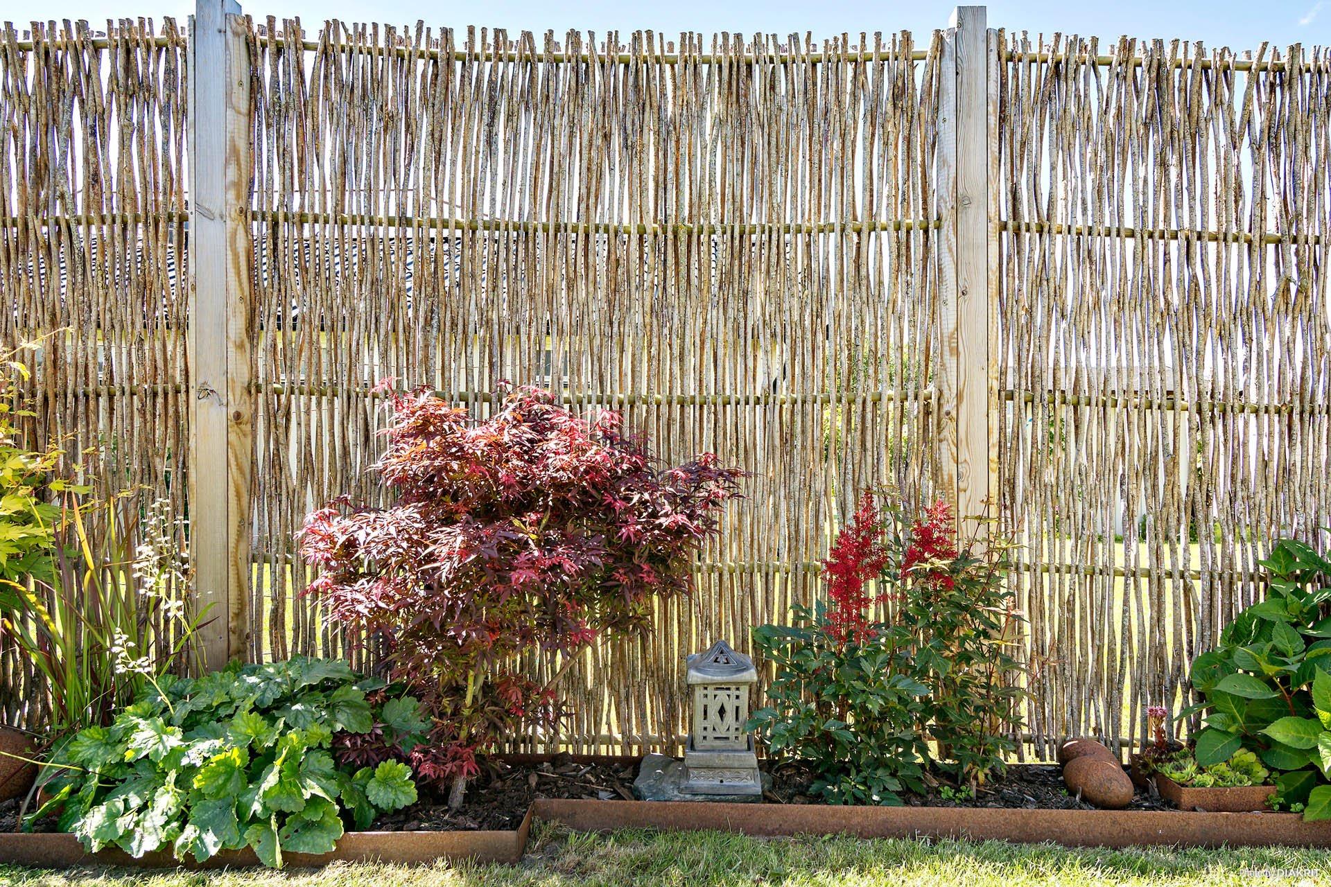 забор садовые цветы